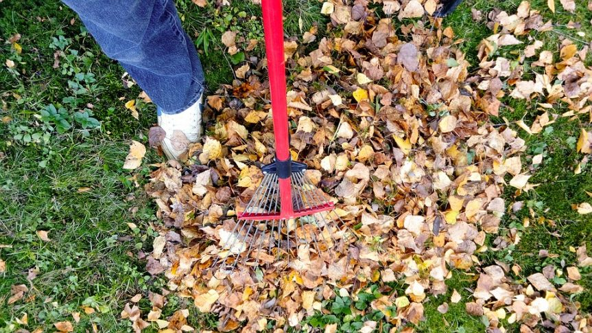 raking-fall-leaves
